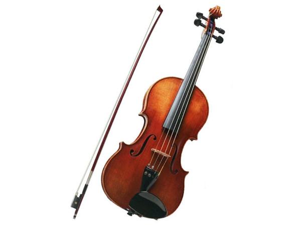Violino eko bowed instruments ebv 1410 4 4 apicella - Immagini violino a colori ...