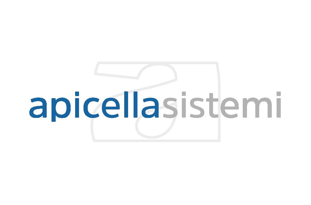 Apicella Sistemi – Negozio on Line
